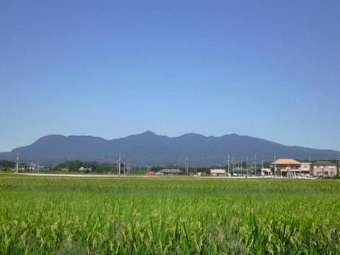 田舎へ行ってきました。